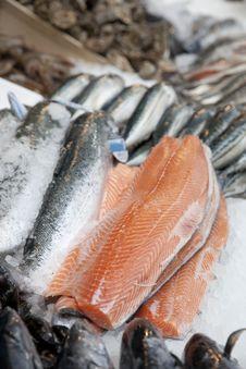 Free Salmon Stock Photos - 19372543