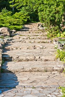 Free Stone Path In The Garden Royalty Free Stock Photography - 19374487