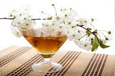 Drink And Blossoming Branch Of An Apple-tree Stock Photo