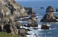 Bodega Head Coastline Royalty Free Stock Photos