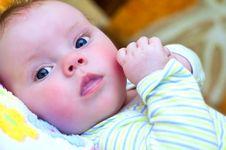 Free Baby Stock Image - 19377911