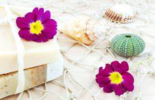 Free Handmade Soap Still Life Royalty Free Stock Photos - 19378718