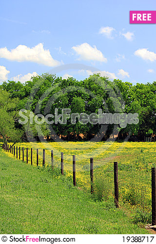 Free Pasture With Yellow Flowers And Fence Royalty Free Stock Photography - 19388717