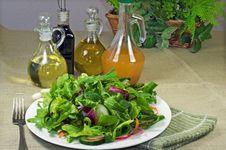 Free Rich Arugula Salad Royalty Free Stock Images - 19380529