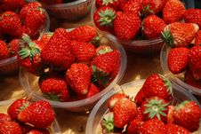 Free Several Plates Of Strawberry Royalty Free Stock Photos - 19385608