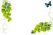 Free Gren Leaf Illustration Background. Royalty Free Stock Photography - 19386877