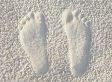 Free Footprints In The Sand Royalty Free Stock Photography - 19388687