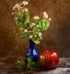 Free Flowers And Apple Stock Photography - 19388782