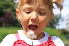 Free Girl Blowing A Dandelion Stock Image - 19388971