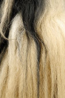 Free Yak Hair Texture Stock Images - 19389374