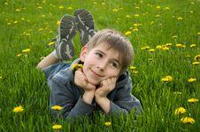Free Boy Lying On Dandelion Meadow Stock Photo - 19389540