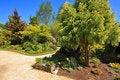 Free Beautiful Spring Garden Royalty Free Stock Image - 19394096