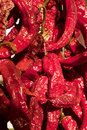 Free Red Peppers Royalty Free Stock Photos - 19394218