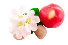 Free Apple, Apple Flowers And Stones Stock Photos - 19391153