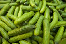 Free Cucumbers Stock Images - 19392514