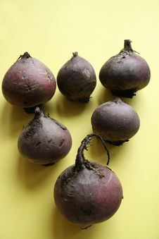 Free Beets Stock Photos - 19392663