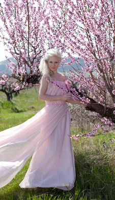 Free Young Pretty Blond Woman In Blooming Garden Stock Photos - 19396073