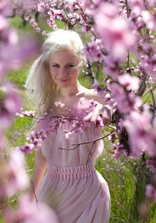 Young Pretty Blond Woman In Blooming Garden Stock Photo