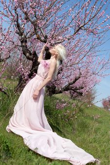 Young Pretty Blond Woman In Blooming Garden Royalty Free Stock Photo