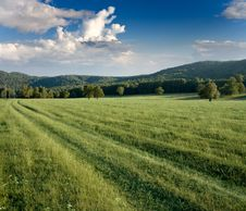 Free Green Meadows And Forested Hills Royalty Free Stock Photos - 19398678