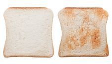 Blank Toast Slice Toasted And Pure Stock Photography