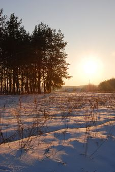 Free Cold Winter Sunset Royalty Free Stock Photography - 1947897