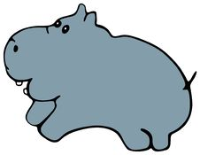 Free Hippopotamus Royalty Free Stock Photography - 1949657