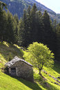 Free House In The Meadow Stock Photos - 19405923