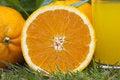 Free Orange Stock Images - 19407114