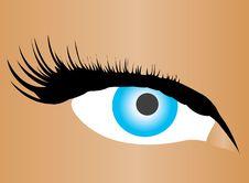 Free Beautiful Female Blue Eye Stock Photos - 19400823