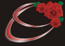 Free Red Rose On A Black Background Stock Photos - 19402593