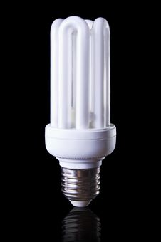 Free Energy Saving Lamp Stock Photo - 19402810