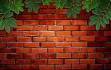 Free Green Leaf With Water Droplets On Brick Wall Stock Photography - 19403622