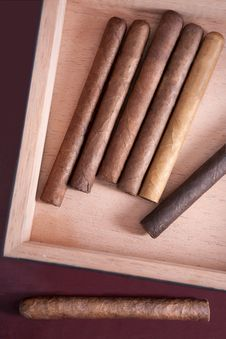 Free Cigar Stock Photography - 19405922