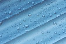 Free Waterdrops Royalty Free Stock Images - 19405949