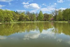 Free Lake In The Park Royalty Free Stock Photo - 19406195