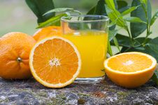 Free Orange Juice Stock Photos - 19407023