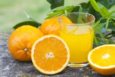 Free Orange Juice Stock Photo - 19407040