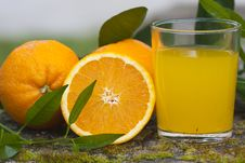 Free Orange Juice Royalty Free Stock Photography - 19407157