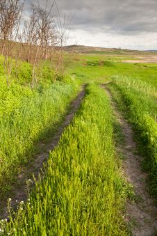 Free Rural Muddy Road Royalty Free Stock Photo - 19407465