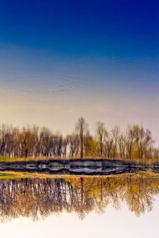 Free Spring Forest River With Reflection Of The Sky Royalty Free Stock Photo - 19408315