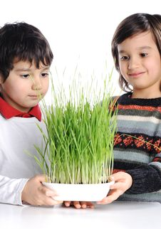 Free Two Boys With Green Grass Royalty Free Stock Photography - 19408587