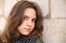 Free Teenage Girl On A Brick Background Royalty Free Stock Image - 19408666