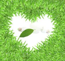 Free Isolated Green Heart Grass Photo Frame With Lamp Royalty Free Stock Images - 19409489