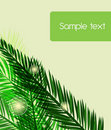 Free Palm Leafs Stock Images - 19411084