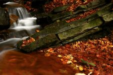 Free Autumn Stream Stock Photography - 19410772