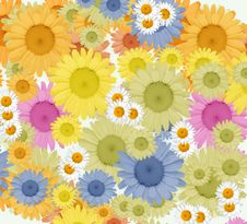 Free Bright Floral Background Royalty Free Stock Images - 19412639
