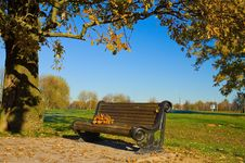 Free Bench In Autumn Park Royalty Free Stock Image - 19412806