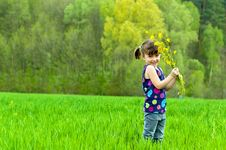 Free Little Girl With Flowers Outdoors Stock Photography - 19413782