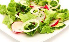 Free Fresh Salad Stock Photography - 19414082